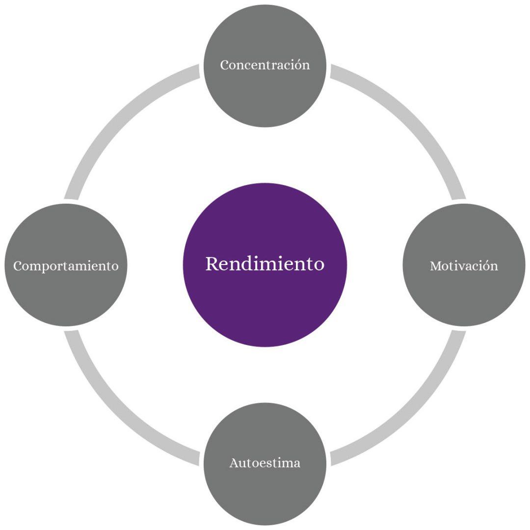 infografía rendimiento académico