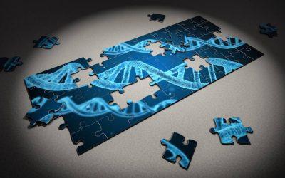 ¿El comportamiento es genético o aprendido?